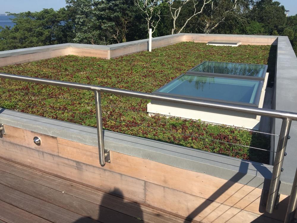 Flat Roof Gardens Live Vegetation Cape Cod Roof