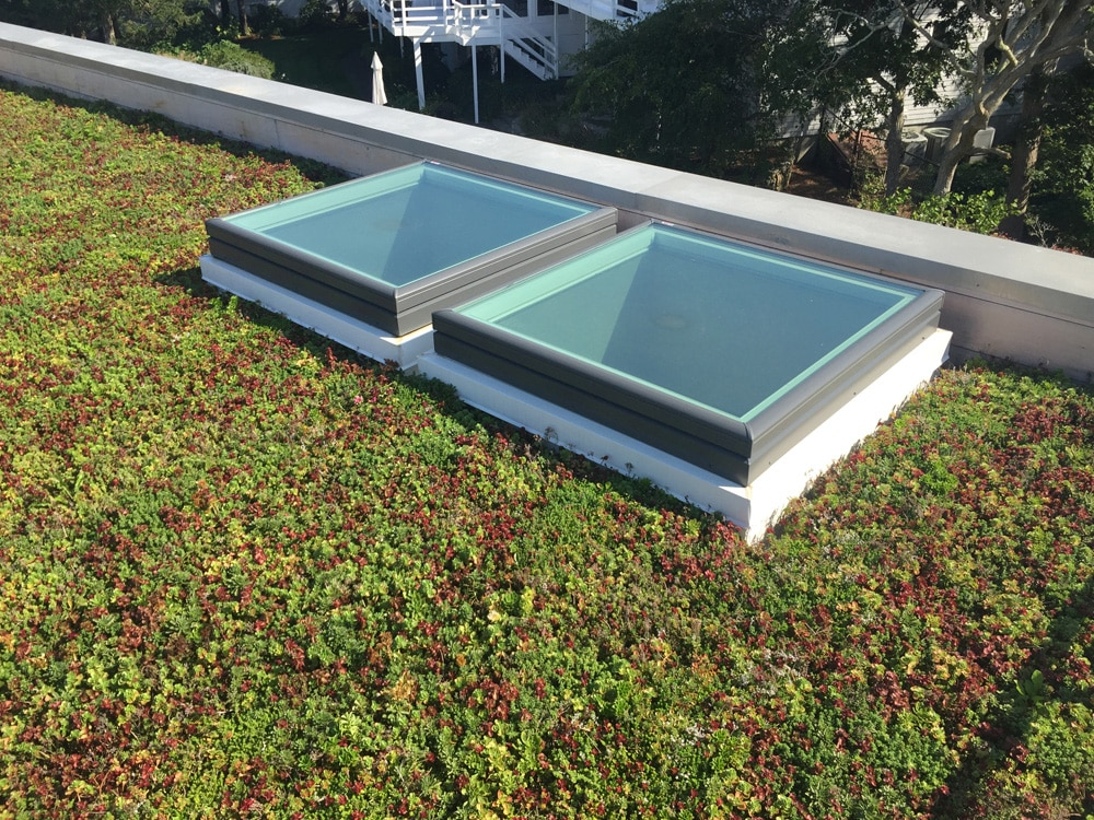 Flat Roof Gardens Live Vegetation Cape Cod Roof